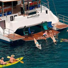 Luxury Sailing & Motor Catamaran swimming & kayaking