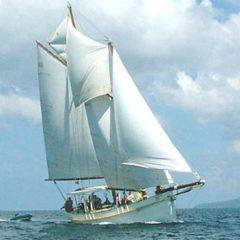 Classic Schooner Sailing Yacht six sails up