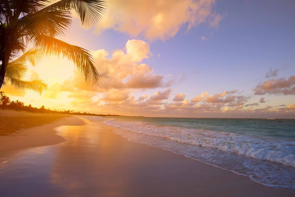Palm trees and Sunsets on Phuket Island